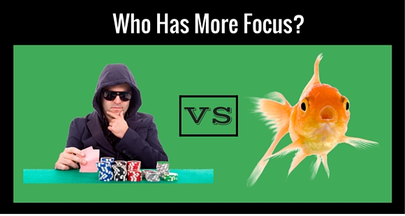 Who has more focus?